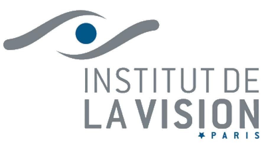 Institut Vision